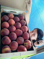 нектарин, персик, цитрус